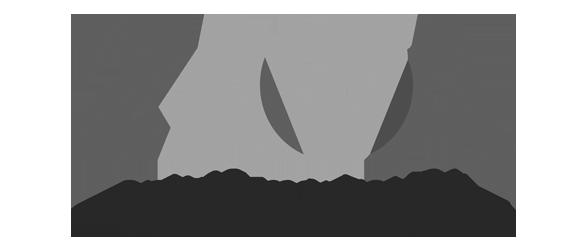 Zaga Online Marketing bureau Friesland